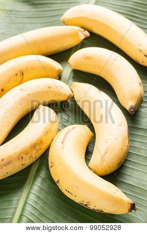 Bananas On Green Banana Leaf