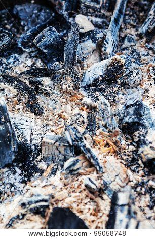 Burnt Coal And Sawdust Taken At Close Range