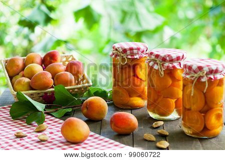 Apricot compote with fresh apricots