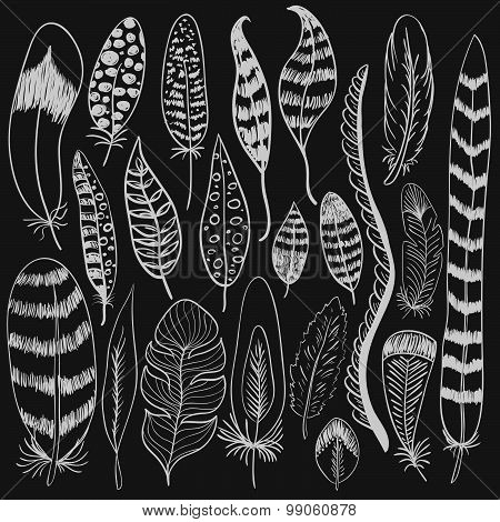 Hand Drawn Doodle Vector Feathers Set