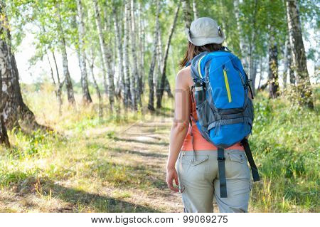 Young woman trekking in a birch forest