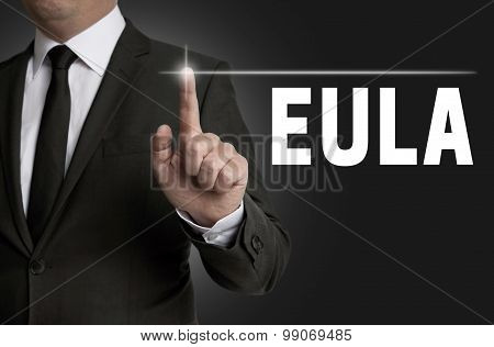 Eula Touchscreen Is Operated By Businessman