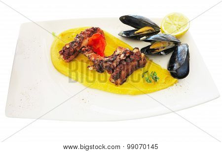 Grilled Octopus With Fava And Mussel On Square Dish Isolated Over White