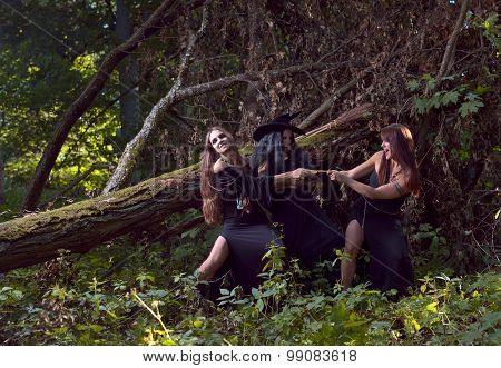 Three Witches In Forest
