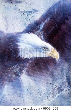 painting eagle on abstract background, wings to fly, USA Symbols Freedom.