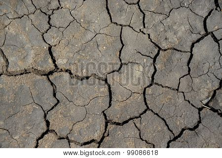 cracked surface of earth as good textured background