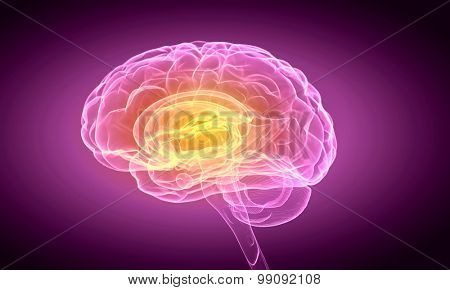 Science image with human brain on purple background