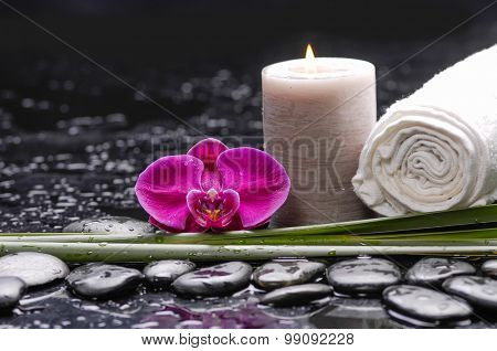 Red orchid and green leaf with candle ,towel on therapy stones