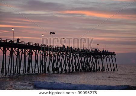Fiherman On The Pier
