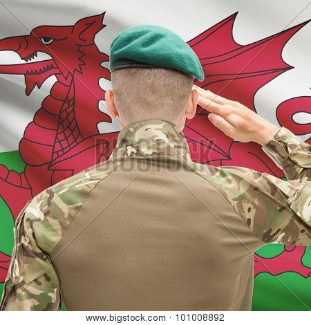 National Military Forces With Flag On Background Conceptual Series - Wales