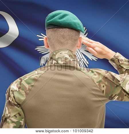 Soldier Saluting To Usa State Flag Conceptual Series - South Carolina