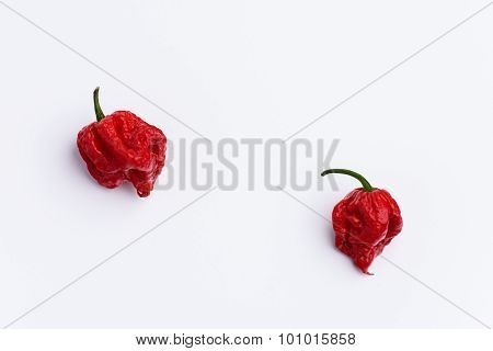Two Carolina Reaper Hot Chilli Peppers On White