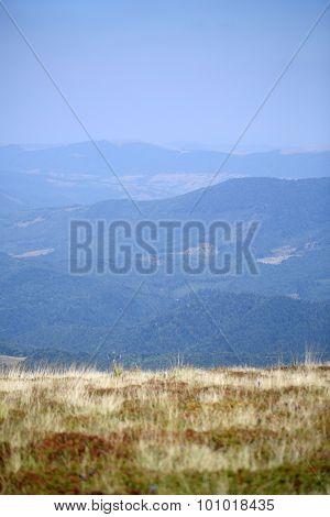 Beautiful Spaciousness Landscape