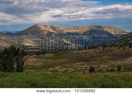Grand Teton Hiking Trail 6