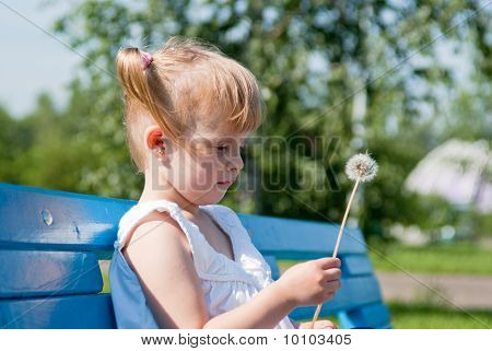 Thoughtful Girl With A Dandelion On A Park Bench