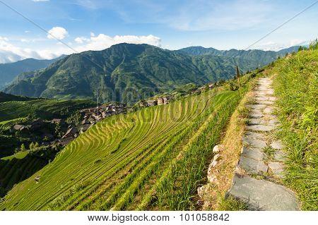 Longsheng rice terraces guilin china landscape