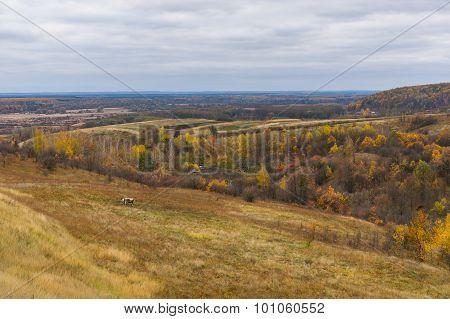 Late fall landscape