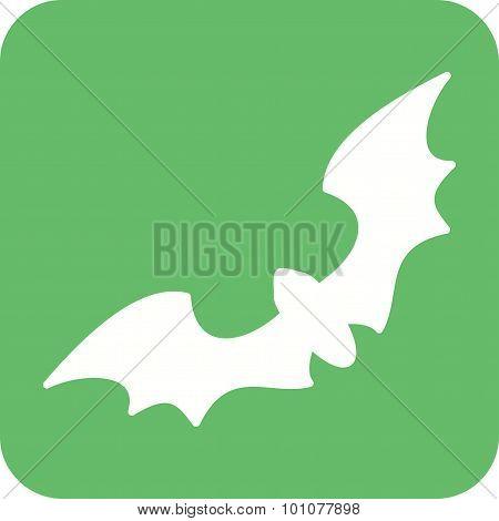 Bat , Bird