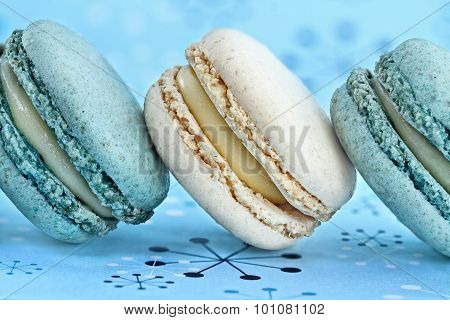 Blueberry And Vanilla Macarons