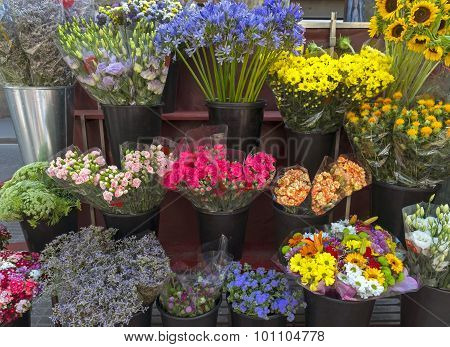 Outdoor Flower Market On Las Ramblas