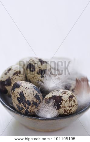 Speckled quail eggs with feathers in a rustic clay bowl, fresh organic farm produce for easter decoration celebrations