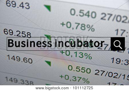 Business Incubator