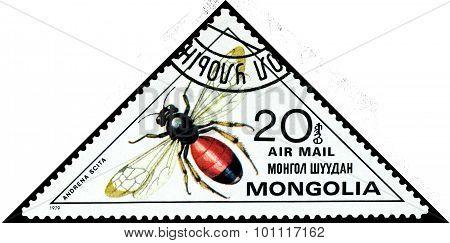 Vintage  Postage Stamp. Andrena Scita.