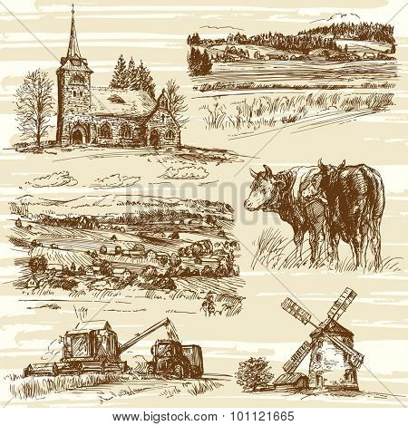 Farm, cows, harvest, rural landscape - hand drawn set