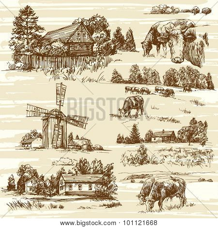 Farm, cows, rural landscape - hand drawn set