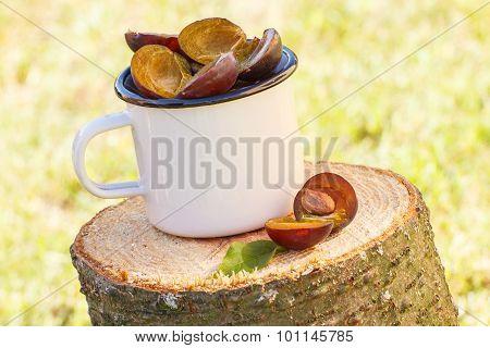 Plums In Metallic Mug On Wooden Stump In Garden On Sunny Day