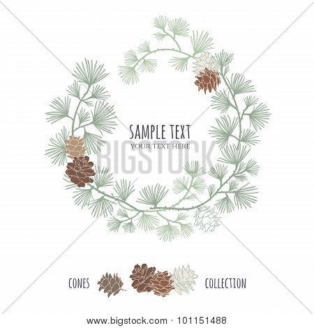 Pine Wreath. Larch branches with cones.