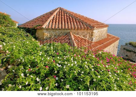 Ulcinj Stari Grad architecture and beautiful flowering, Montenegro