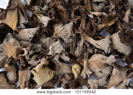 Dried Horn Of Plenty Musfrooms