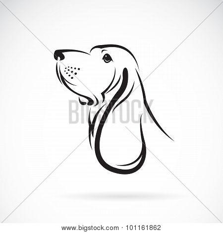 Vector Image Of A Basset Hound Head On White Background
