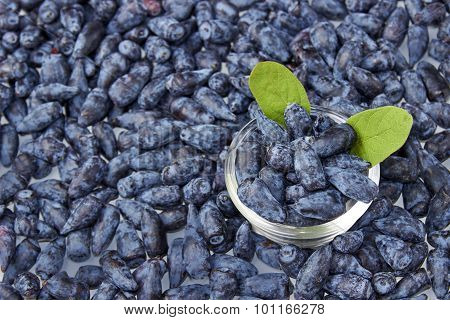 Wet Honeysuckle Berry Fruits Background