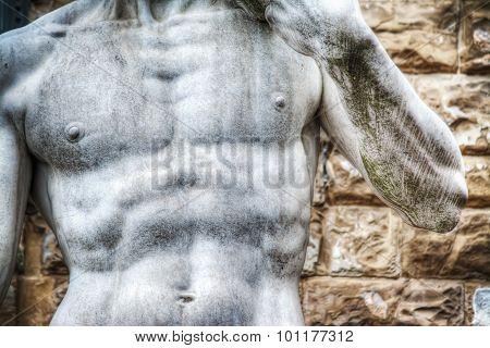 Close Up Of Michelangelo's David Statue Chest In Piazza Della Signoria