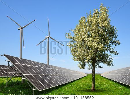 Solar energy panels with wind turbines.