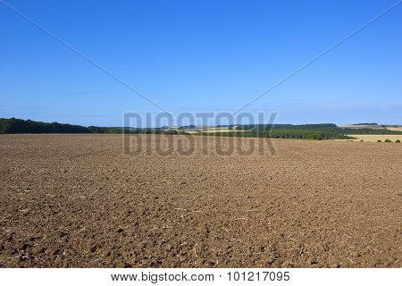 Late Summer Soil Cultivation