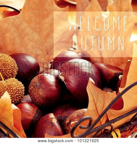 closeup of a pile of chestnuts and dried leaves in a basket, and the text welcome autumn in a text box
