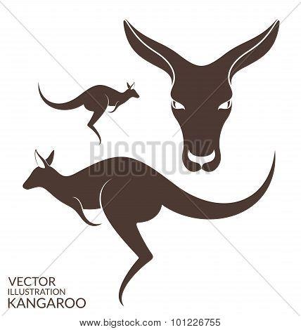 Kangaroo. Set