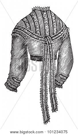 Muslin wais, vintage engraved illustration.