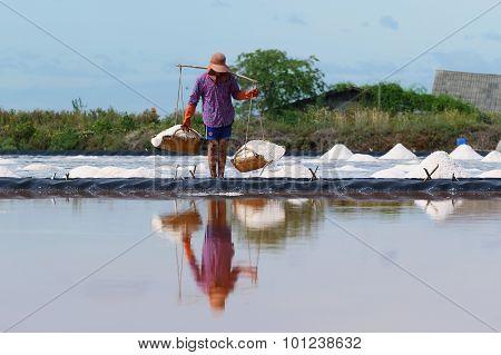 Salt Farming