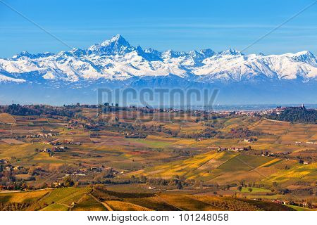 Autumnal hills and snowy mountain ridge on background in Piedmont, Northern Italy.