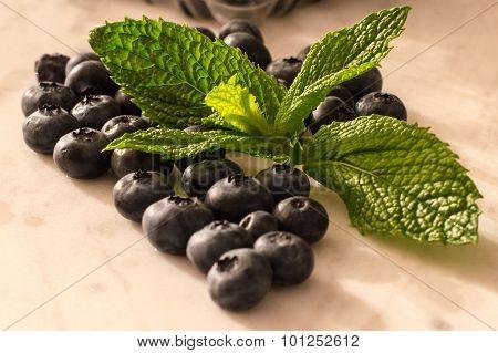 Blueberries & Mint