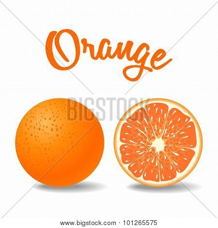 Vector Fresh Solid And Ripe Orange On White Background