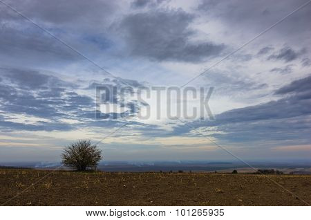 Heavy clouds over the flat prairie agricultural land with a lonely tree at late autumn