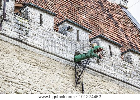 The Gargoyles Of Tallinn, Estonia.