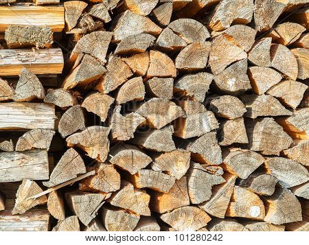Cross Section Of The Timber For The Background. Selective Trendy Soft Focus.