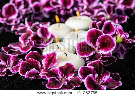 Beautiful Spa Composition Of Blooming Dark Purple Geranium Flower With Dew And Candles In Reflection