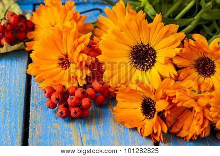 Flowers Of A Calendula On An Old Wooden Background